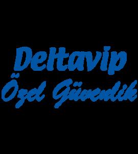 delta vip logo retina