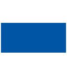 delta vip logo