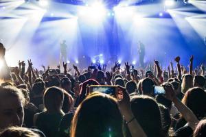 delta güvenlik konser etkinlik güvenliği